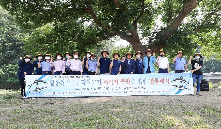 대전시, 지역생태계 상징'감돌고기'2차 복원 (5).jpeg